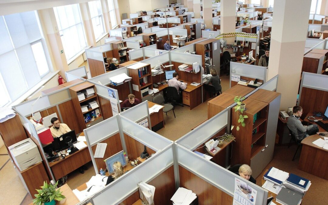 How can we get back to the office (and how a team leader can manage the process)